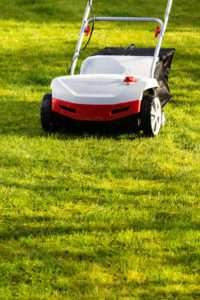 Schnell wachsendes Gras durch den richtigen Dünger