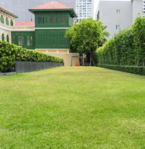 Ein gleichmäßiges Rasenbild durch den richtigen DüngerEin gleichmäßiges Rasenbild durch den richtigen Dünger