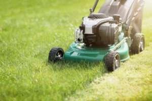 Ein gepflegter Rasen bedarf guter Pflege