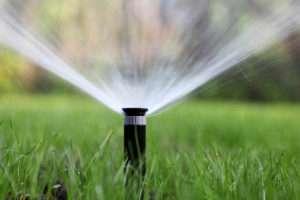 Direkte Bewässerung für ein gutes Ergebnis