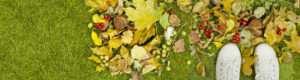 Wenn der Herbst kommt, verdient das Gras eine Pause