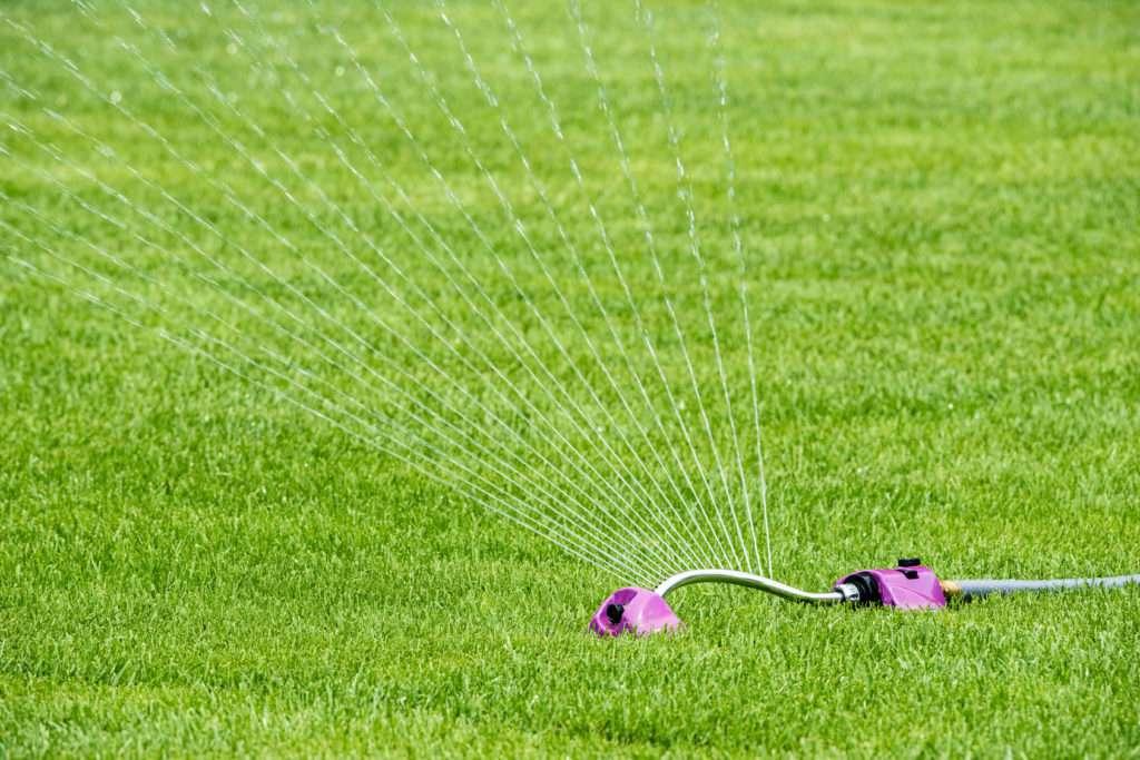 Rasenbewässerung mit Rasensprenger