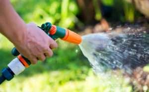 Rasen gründlich bewässern