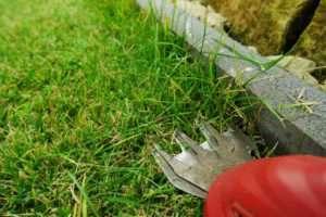 Elektrische Rasenschere