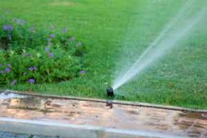 Sprinkler im Garten